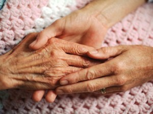 Eldercare Home Health palliative care