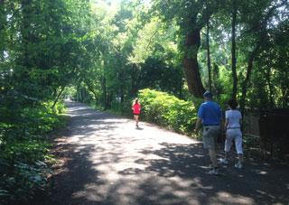 Kay Gardner Beltline Trail, Toronto