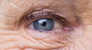 Your aging body - the blind spot in your eye