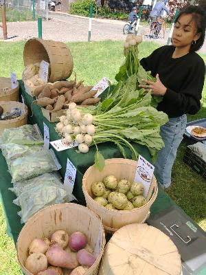 Farmer's market for seniors - a great variety of produce